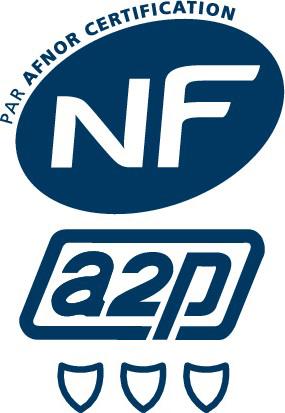 LogoNFA2P